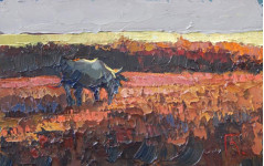 Закат на лугу.  18х27см. к.м. 2013
