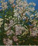 Цветы алиандра.  х.м. 60х50см. 2008г.
